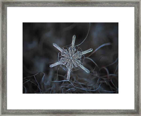 Snowflake Photo - Steering Wheel Framed Print