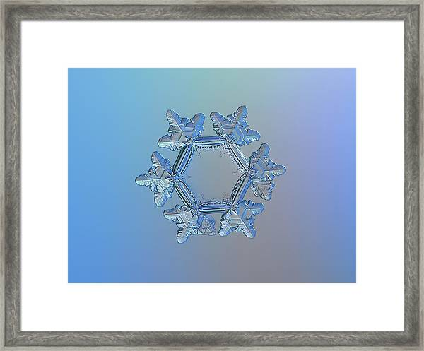 Snowflake Photo - Sunflower Framed Print