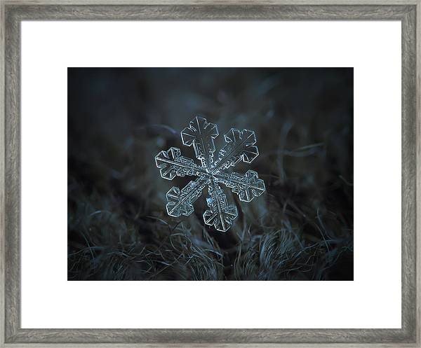 Snowflake Photo - Vega Framed Print