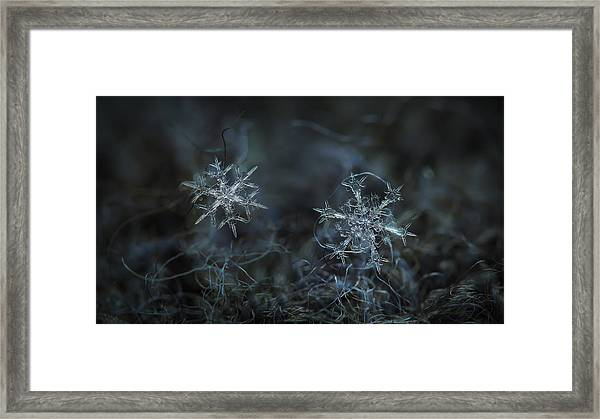 Snowflake Photo - When Winters Meets - 2 Framed Print