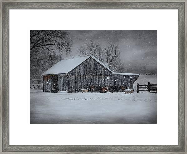 Snowflakes On The Farm Framed Print
