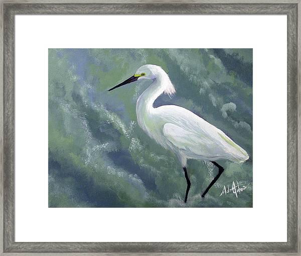Snowy Egret In Water Framed Print