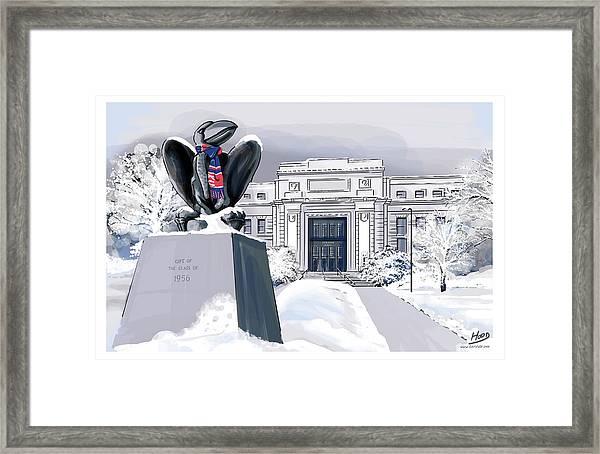 Snowy 'hawk Framed Print
