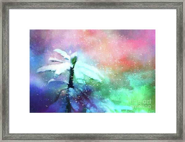 Snowy Winter Abstract Framed Print
