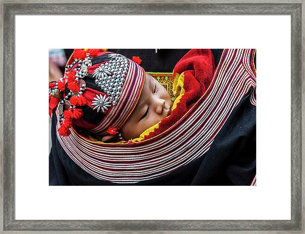 Snug As A Bug. Framed Print