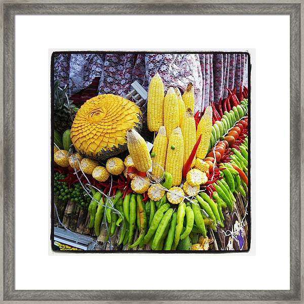 Framed Print featuring the photograph So, Elephants Eat Red Hot Chile by Mr Photojimsf