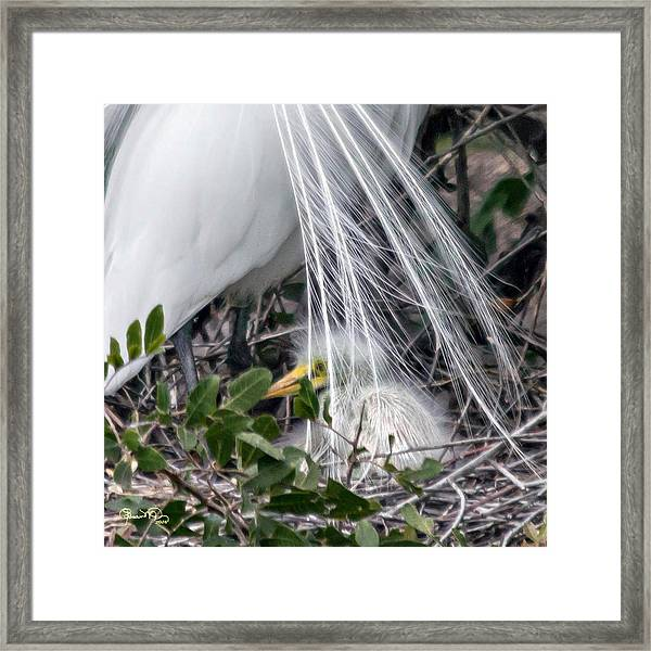 So Safe With Mom 2 Framed Print