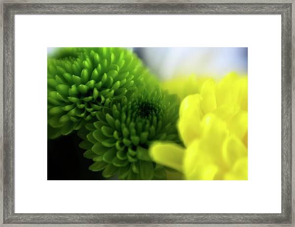 Soft As A Breeze Framed Print