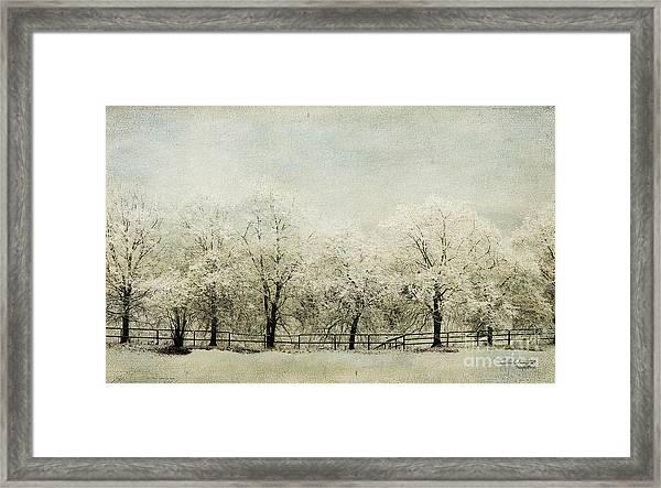Softly Falling Snow Framed Print