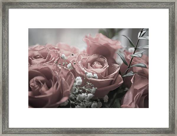 Softness Of Love Framed Print