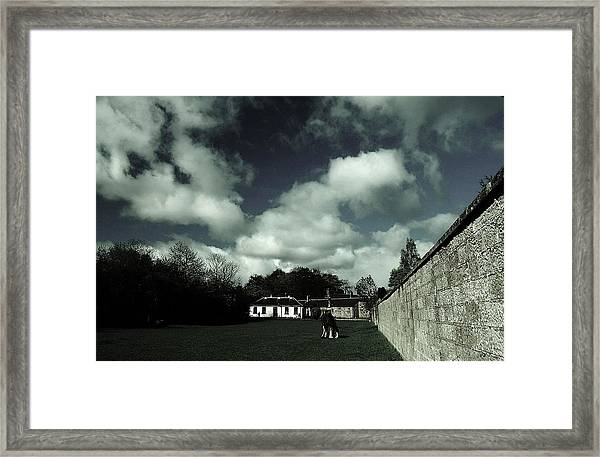 Solitary II Framed Print