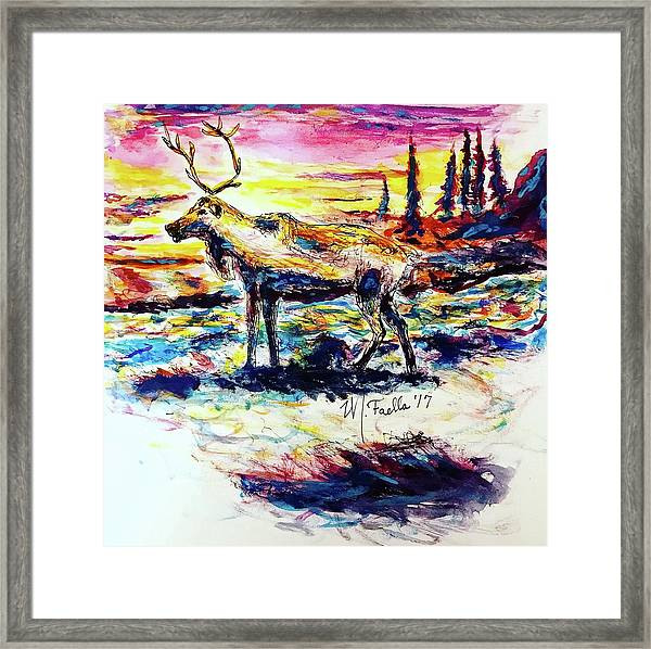 Solitude Caribou Framed Print