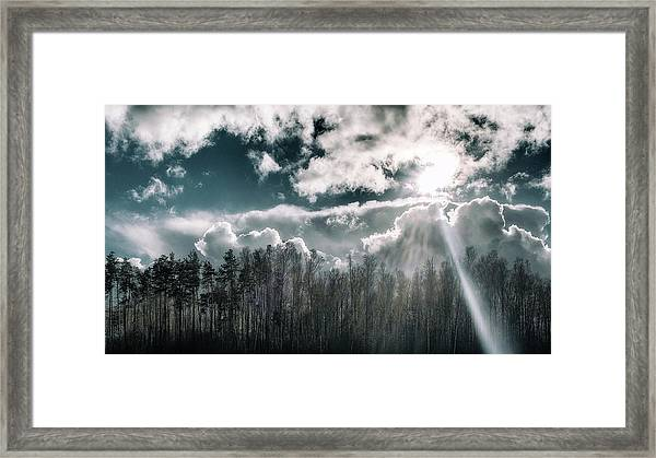 Solitude Forest. Sunychne, 2016. Framed Print