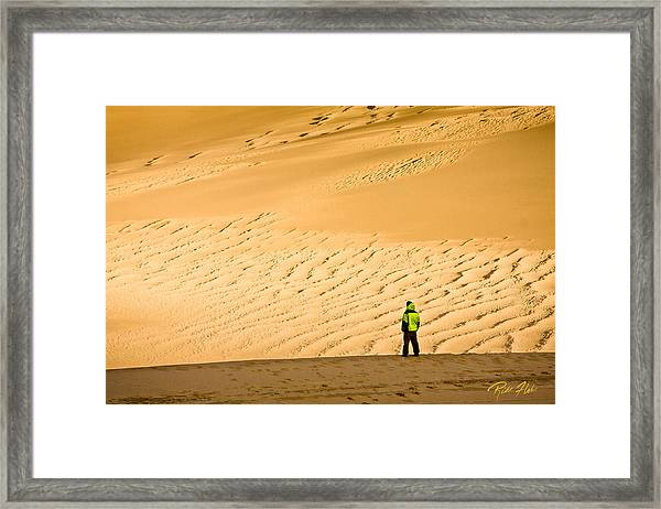 Solitude In The Dunes Framed Print