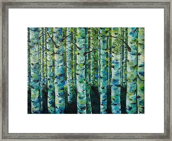 Some Summer Shade Framed Print