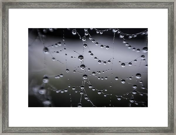 Sometimes Framed Print