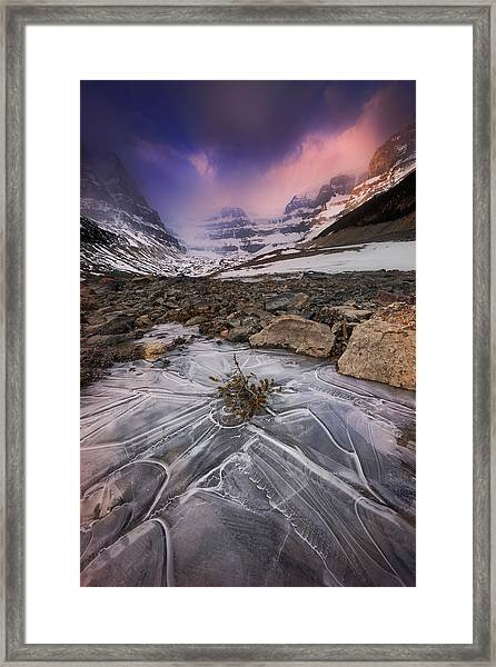 Somewhere In The Canadian Rockies Framed Print