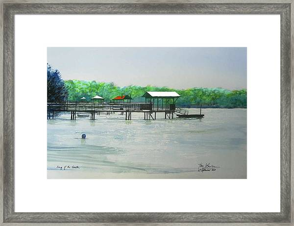 Song Of The South Framed Print by Tim Johnson