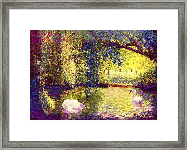 Swans, Soul Mates Framed Print