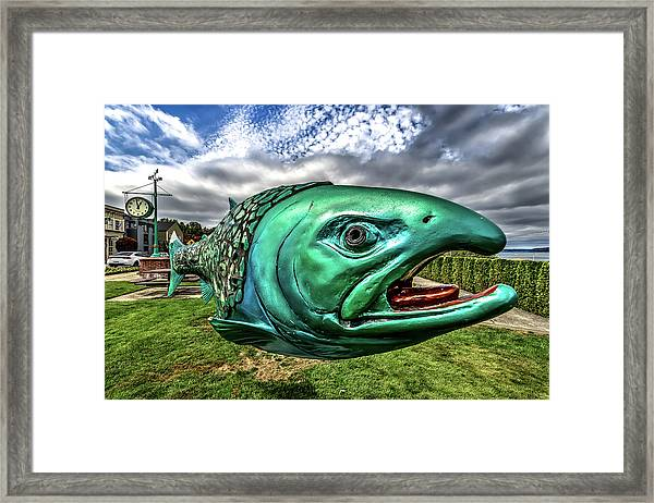Soul Salmon In Hdr Framed Print