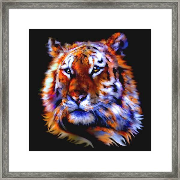 Soulful Tiger Framed Print