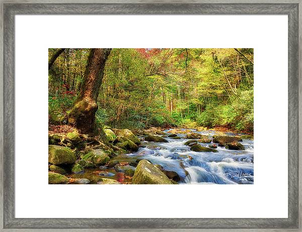 Framed Print featuring the photograph Sounds Of Oconaluftee River by David A Lane