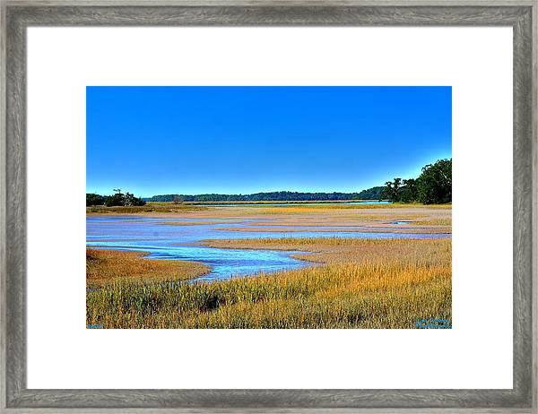 South Carolina Lowcountry H D R Framed Print