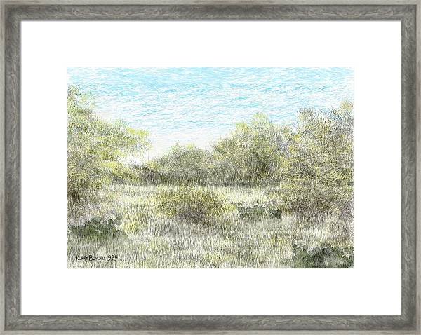South Texas Brush Country II Framed Print