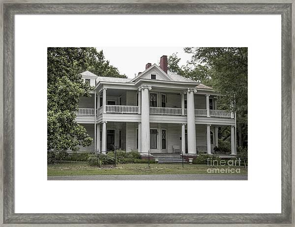 Southern Charmer Framed Print