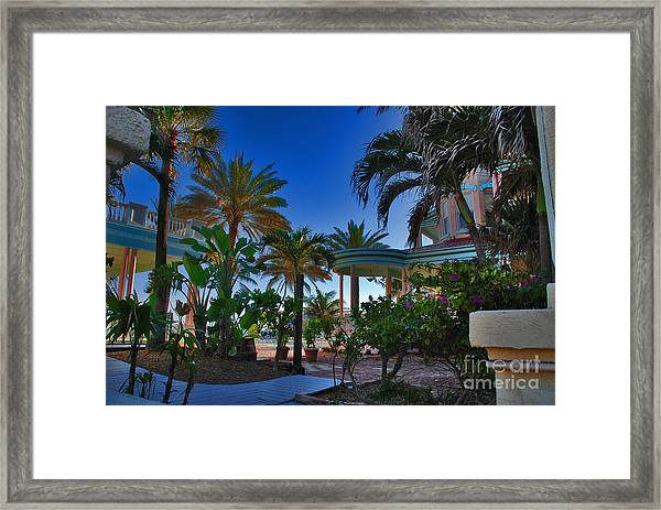 Southernmost Lush Garden In Key West Framed Print