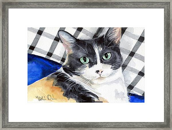 Southpaw - Calico Cat Portrait Framed Print