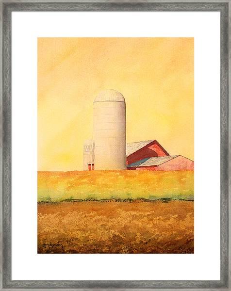 Soybean Field Framed Print