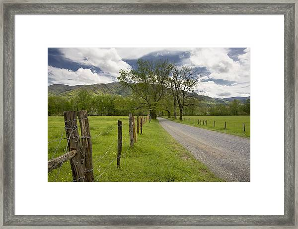 Sparks Lane In Cade Cove Framed Print