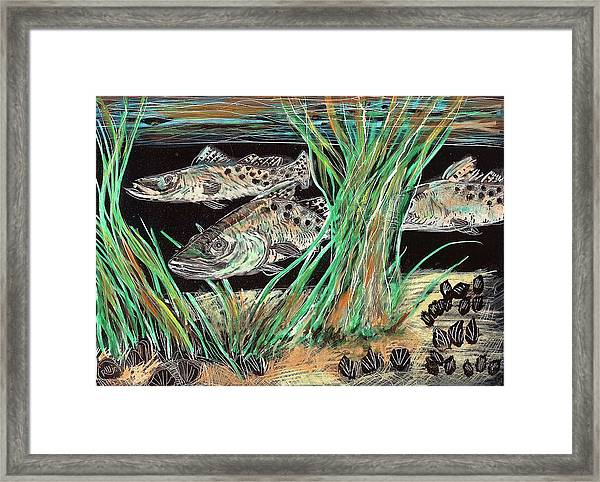 Specks In The Grass Framed Print