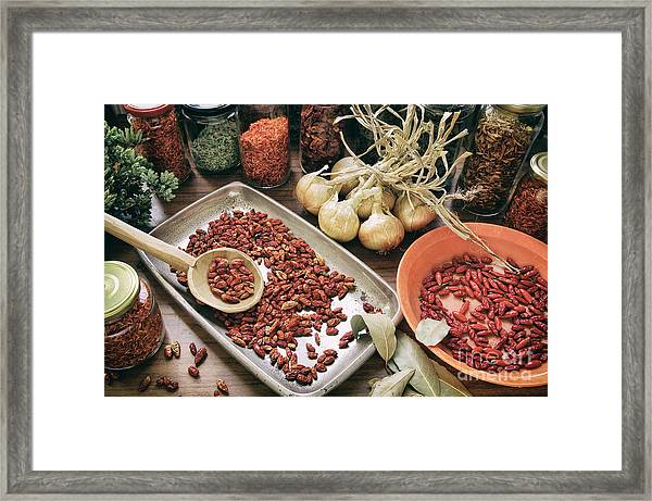 Spices And Herbs Framed Print