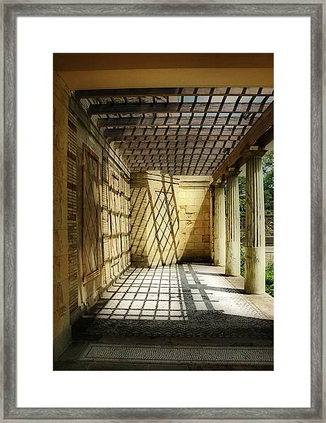 Spider's Den Framed Print
