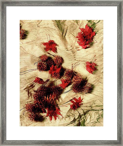 Spiked Nuts Red Framed Print