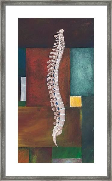 Spinal Column Framed Print