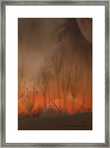 Spirit Of The Land Framed Print