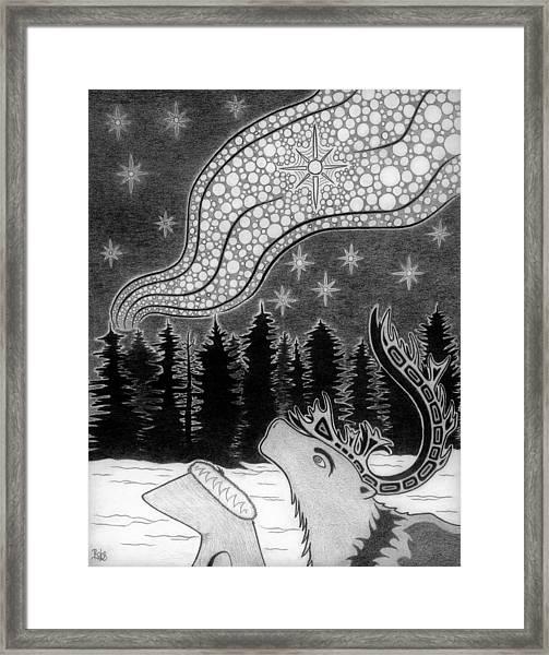 Spirit Of Wonder Framed Print