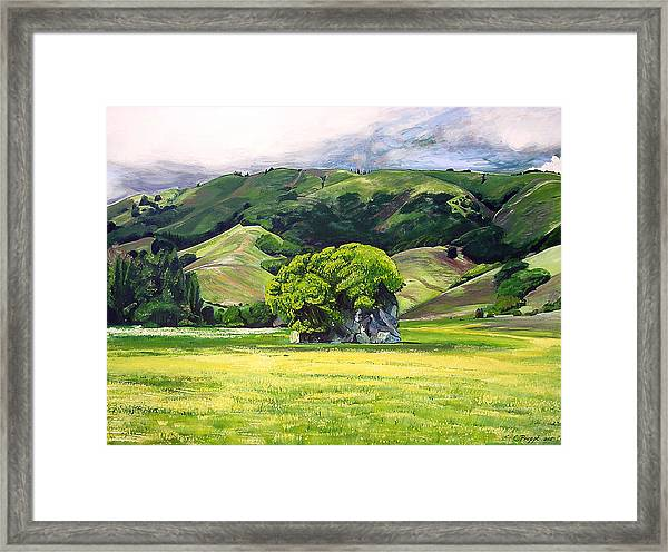 Spirit Rock Framed Print by Colleen Proppe