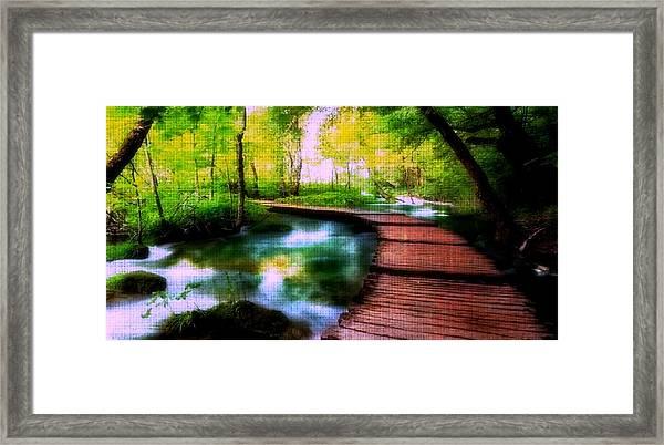 Spiritual Walk Framed Print