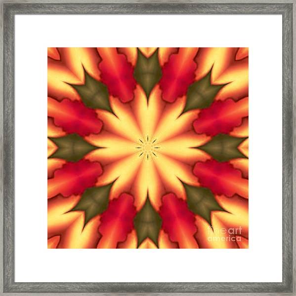 Spiro#4 Framed Print