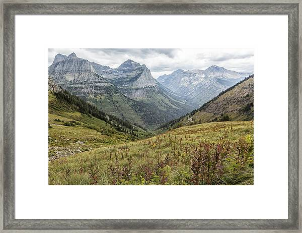 Splendor From Highline Trail - Glacier Framed Print