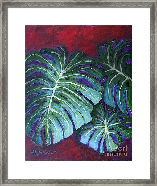 Split Leaf Philodendron Framed Print