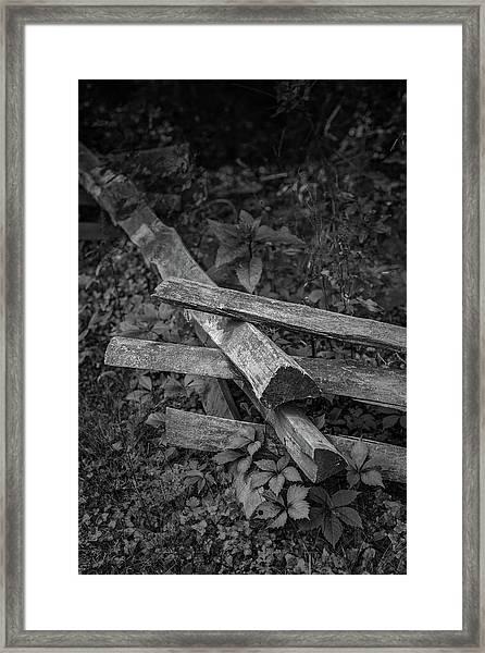 Split Rail Framed Print