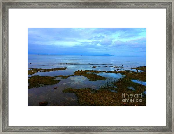 Spooky Morning Tide Receded From Beach Framed Print