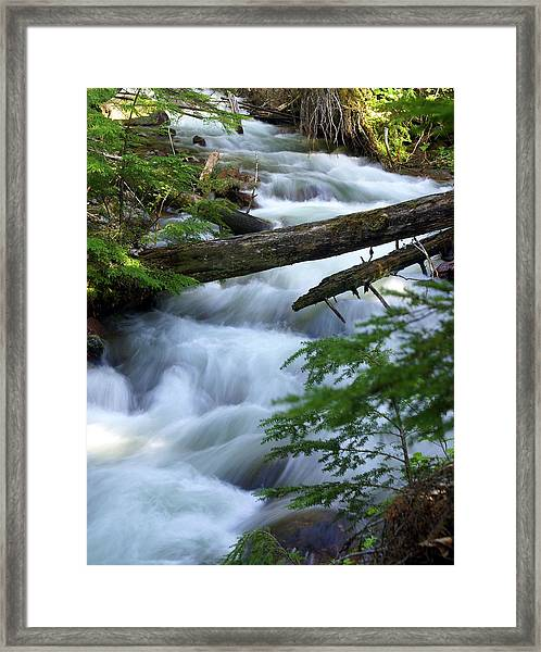Sprague Creek Glacier National Park Framed Print