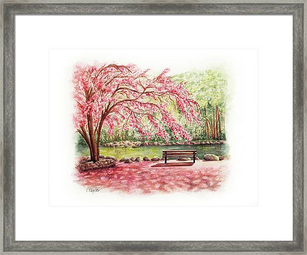 Spring At Lithia Park Framed Print