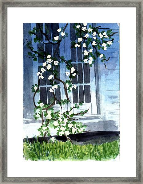 Spring At Mom's Framed Print by Jane Croteau